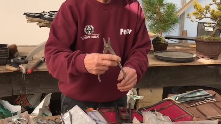 bonsai jin pliers