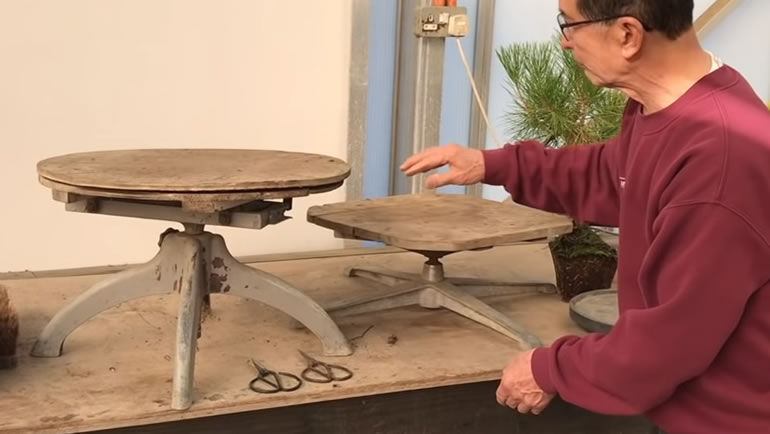 bonsai turntable
