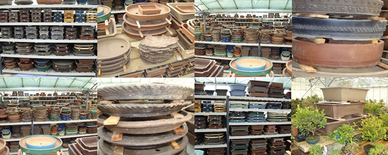 Japanese And Chinese Bonsai Pots From Herons Bonsai