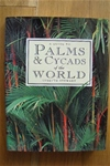 Palms & Cycads of the world by Lynette Stewart
