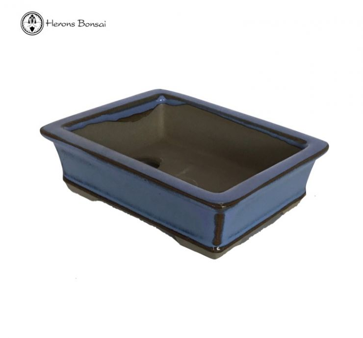 Mame (Miniature) Bonsai Pot (10cm)