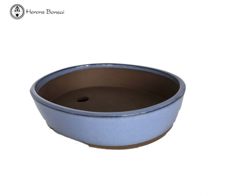 Baby Blue Oval Bonsai Pot (20cm)