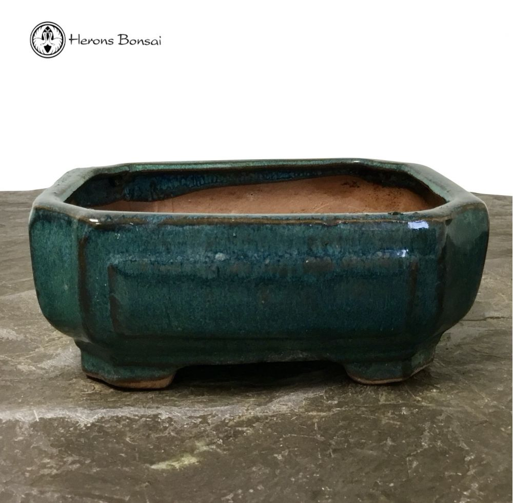 Blue/Green Irregular Bonsai Pot (16cm) | USED