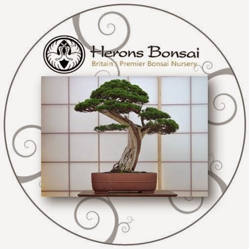 Bonsai Gift Voucher