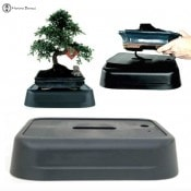 hydro bonsai system | self watering