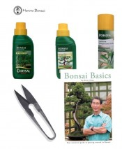 Indoor Feed Kit (2xFeed,snips, bonsai basics, leaf shine) | Herons Bonsai