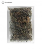 Sphagnum Moss - small bag