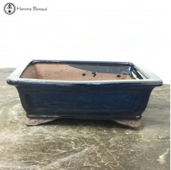 Blue Rectangle Bonsai Pot (20.5cm)